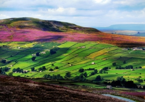 Yorkshire Countryside-Image by James Hardisty
