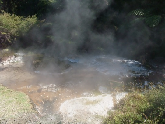 Steaming, gurgling stream