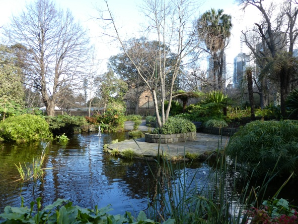 A restful spot in the Fitzroy Gardens with Cook's Cottage in the background.