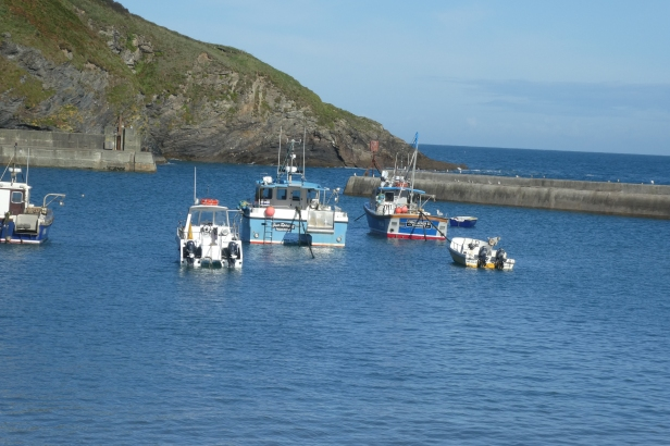 The harbour in the sunshine